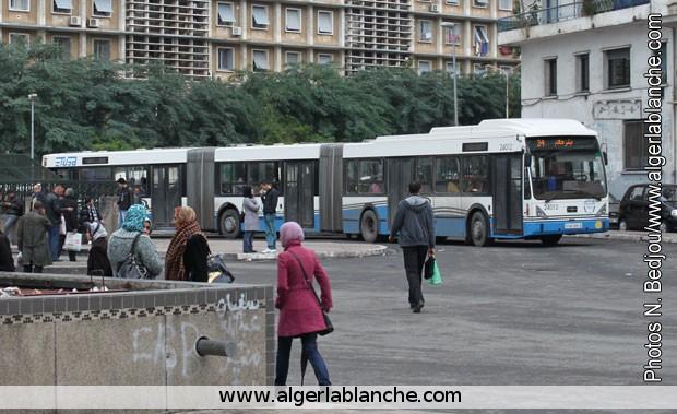 site de rencontre algérie gratuit Chambéry